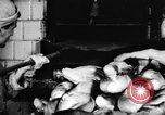 Image of bread supplied to Italian citizens in World War 2 Italy, 1944, second 24 stock footage video 65675071256