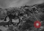 Image of Allied troops Italy, 1944, second 36 stock footage video 65675071258