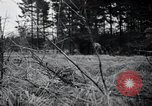 Image of United States 1st Infantry Division Belgium, 1944, second 22 stock footage video 65675071308