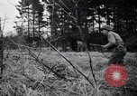 Image of United States 1st Infantry Division Belgium, 1944, second 23 stock footage video 65675071308