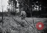 Image of United States 1st Infantry Division Belgium, 1944, second 25 stock footage video 65675071308