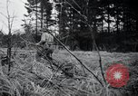 Image of United States 1st Infantry Division Belgium, 1944, second 26 stock footage video 65675071308