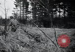 Image of United States 1st Infantry Division Belgium, 1944, second 27 stock footage video 65675071308