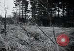 Image of United States 1st Infantry Division Belgium, 1944, second 29 stock footage video 65675071308