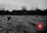Image of United States 1st Infantry Division Belgium, 1944, second 30 stock footage video 65675071308