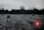 Image of United States 1st Infantry Division Belgium, 1944, second 31 stock footage video 65675071308