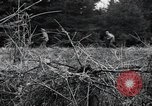 Image of United States 1st Infantry Division Belgium, 1944, second 38 stock footage video 65675071308