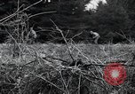 Image of United States 1st Infantry Division Belgium, 1944, second 39 stock footage video 65675071308