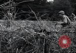Image of United States 1st Infantry Division Belgium, 1944, second 49 stock footage video 65675071308