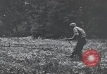 Image of United States 1st Infantry Division Belgium, 1944, second 55 stock footage video 65675071308