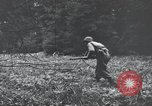 Image of United States 1st Infantry Division Belgium, 1944, second 56 stock footage video 65675071308