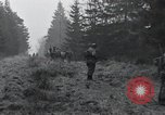 Image of United States 1st Division Belgium, 1944, second 31 stock footage video 65675071309