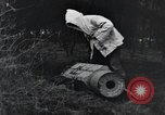 Image of United States 1st Division Belgium, 1944, second 45 stock footage video 65675071310