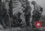 Image of United States 1st Division Belgium, 1944, second 19 stock footage video 65675071311
