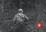 Image of United States 1st Division Belgium, 1944, second 48 stock footage video 65675071311