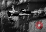 Image of swimming competition Germany, 1943, second 16 stock footage video 65675071389