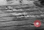 Image of swimming competition Germany, 1943, second 29 stock footage video 65675071389