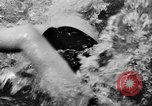 Image of swimming competition Germany, 1943, second 60 stock footage video 65675071389