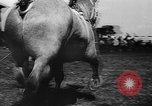 Image of agricultural show Bellahoj Denmark, 1943, second 33 stock footage video 65675071390