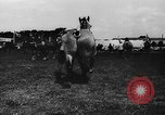 Image of agricultural show Bellahoj Denmark, 1943, second 34 stock footage video 65675071390
