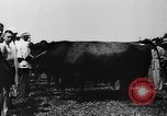Image of agricultural show Bellahoj Denmark, 1943, second 47 stock footage video 65675071390