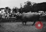 Image of agricultural show Bellahoj Denmark, 1943, second 53 stock footage video 65675071390