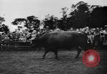 Image of agricultural show Bellahoj Denmark, 1943, second 54 stock footage video 65675071390