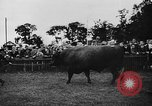 Image of agricultural show Bellahoj Denmark, 1943, second 55 stock footage video 65675071390