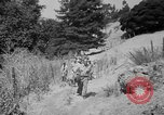 Image of aircraft crash California United States USA, 1951, second 42 stock footage video 65675071432