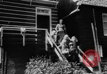 Image of youngsters Holland Netherlands, 1955, second 6 stock footage video 65675071440