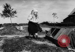 Image of youngsters Holland Netherlands, 1955, second 17 stock footage video 65675071440