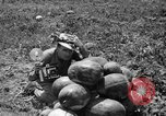 Image of young girls Port Arthur Texas USA, 1944, second 38 stock footage video 65675071447