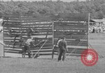 Image of stunt performers Virginia United States USA, 1950, second 59 stock footage video 65675071453
