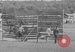 Image of stunt performers Virginia United States USA, 1950, second 61 stock footage video 65675071453