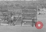 Image of stunt performers Virginia United States USA, 1950, second 62 stock footage video 65675071453