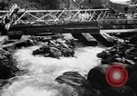 Image of Alewives Maine United States USA, 1957, second 5 stock footage video 65675071463
