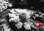 Image of Alewives Maine United States USA, 1957, second 7 stock footage video 65675071463