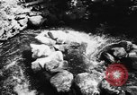Image of Alewives Maine United States USA, 1957, second 8 stock footage video 65675071463