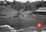 Image of Alewives Maine United States USA, 1957, second 19 stock footage video 65675071463