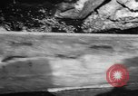 Image of Alewives Maine United States USA, 1957, second 28 stock footage video 65675071463