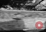 Image of Alewives Maine United States USA, 1957, second 29 stock footage video 65675071463