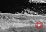 Image of Alewives Maine United States USA, 1957, second 32 stock footage video 65675071463