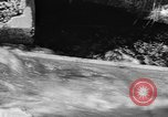 Image of Alewives Maine United States USA, 1957, second 33 stock footage video 65675071463