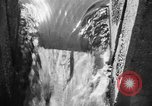 Image of Alewives Maine United States USA, 1957, second 37 stock footage video 65675071463