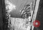 Image of Alewives Maine United States USA, 1957, second 38 stock footage video 65675071463