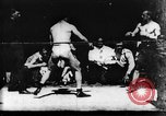 Image of boxers Europe, 1894, second 17 stock footage video 65675071496