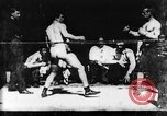 Image of boxers Europe, 1894, second 20 stock footage video 65675071496