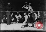 Image of boxers Europe, 1894, second 35 stock footage video 65675071496
