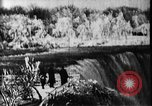 Image of Niagara Falls United States USA, 1896, second 2 stock footage video 65675071521