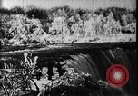 Image of Niagara Falls United States USA, 1896, second 3 stock footage video 65675071521